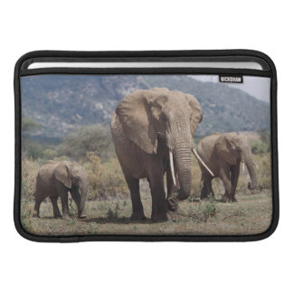 Mother elephant walking with elephant calf MacBook sleeves