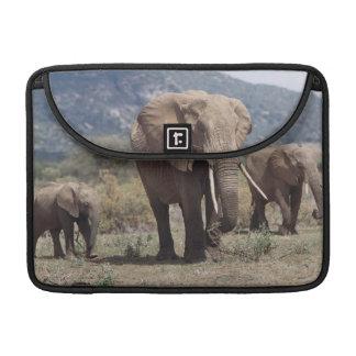 Mother elephant walking with elephant calf sleeve for MacBooks