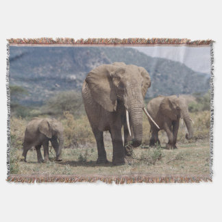 Mother elephant walking with elephant calf throw blanket
