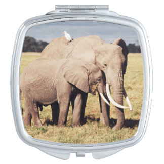 Mother elephant with young mirror for makeup