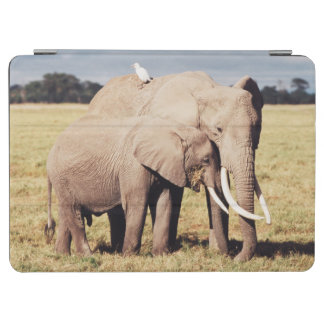 Mother elephant with young iPad air cover