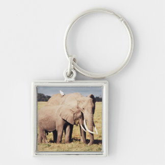 Mother elephant with young key chains