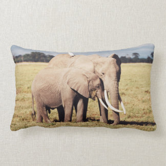 Mother elephant with young lumbar cushion