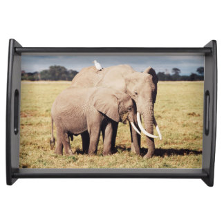 Mother elephant with young serving tray