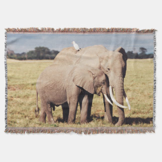 Mother elephant with young throw blanket