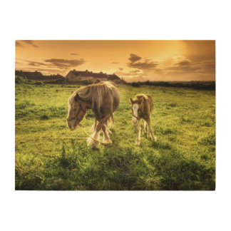 Mother & Foal Horse Wood Print