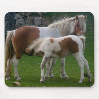 Mother & Foal Ponies Bodmin Moor Cornwall England Mouse Mat