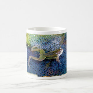 Mother Garden Frog in a Pond of her Frogspawn Mugs