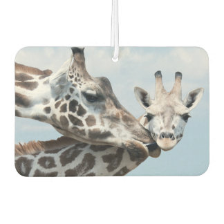 Mother giraffe kisses her calf car air freshener