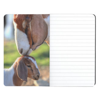 Mother goat kissing her baby on head. journals
