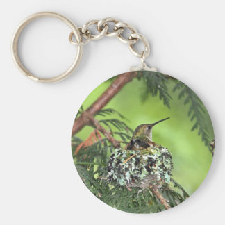 Mother Hummingbird on Nest Key Chain