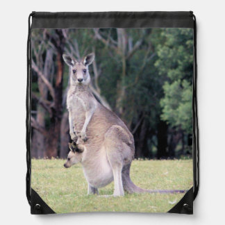 Mother Kangaroo with Baby Joey in Her Pouch Rucksacks