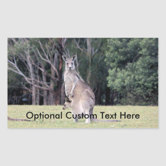 Mother Kangaroo with Baby Joey in Her Pouch Rectangular Sticker
