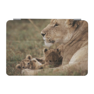 Mother Lion sitting with cubs iPad Mini Cover