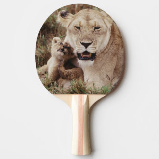Mother lion sitting with her cub ping pong paddle