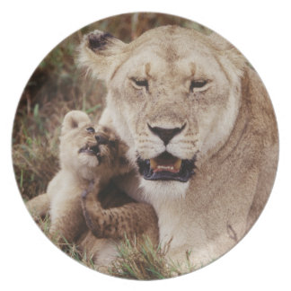 Mother lion sitting with her cub plate