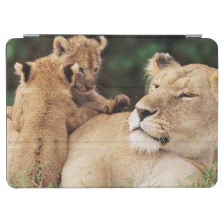 Mother lion with cubs iPad air cover