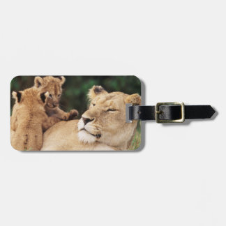 Mother lion with cubs luggage tag