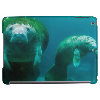 Mother manatee with her calf in Crystal River Case For iPad Air