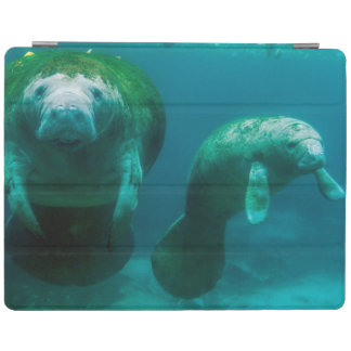 Mother manatee with her calf in Crystal River iPad Cover