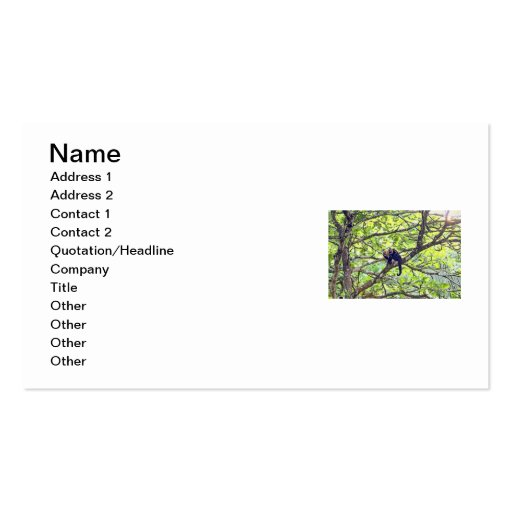 Mother Monkey and Baby in Jungle Business Card Template