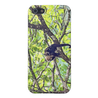 Mother Monkey and Baby in Jungle iPhone 5 Cases