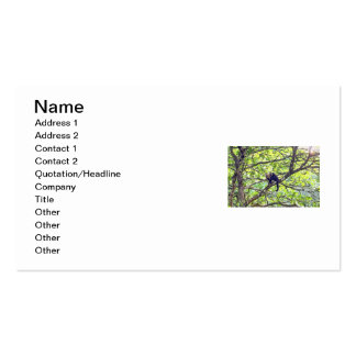 Mother Monkey and Baby in Jungle Pack Of Standard Business Cards