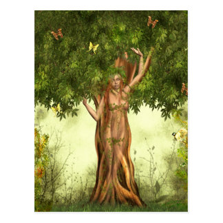 Mother Nature Tree Postcard