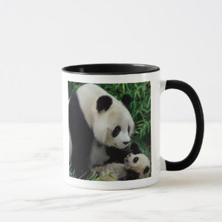 Mother panda and baby in the bamboo bush, Wolong Mug