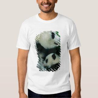 Mother panda nursing cub, Wolong, Sichuan, China Shirt