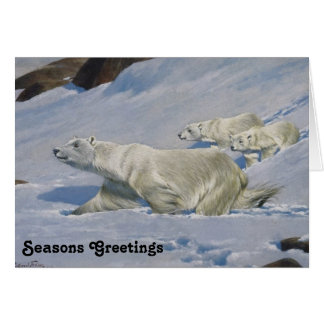 Mother Polar Bear and Cubs Card