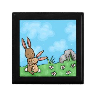 Mother Rabbit and Baby Bunny hug Gift Box