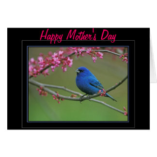 "Mother""s Day Gifts Greeting Card"