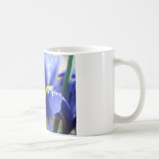 MOTHER'S DAY GIFTS CARDS 1 IRISES Mom Mothers Mugs