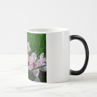 MOTHER'S DAY MUGS Blossoms 4 Gifts Mom Mothers