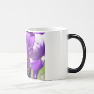 MOTHER'S DAY MUGS GIFTS 11 Purple IRIS Flowers