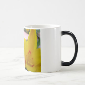 MOTHER'S DAY MUGS GIFTS 3 Tulips Mom Mothers