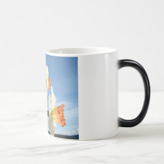 MOTHER'S DAY MUGS GIFTS 6 NARCISSUS Flowers Sky