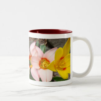 MOTHER'S DAY MUGS GIFTS 7 Tulips Mom Mothers