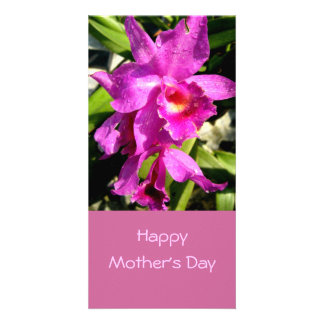 Mother s Day Photo Cards