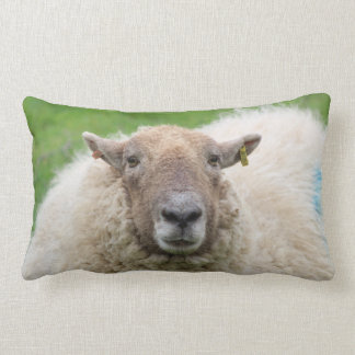 Mother Sheep Lumbar Cushion