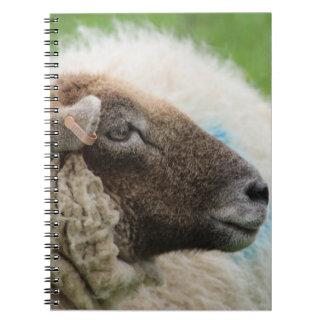 Mother Sheep Notebook