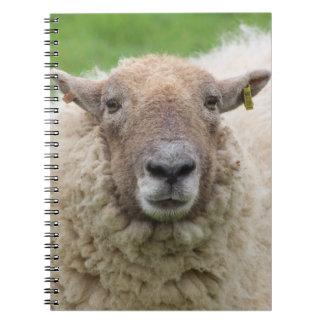 Mother Sheep Spiral Notebook