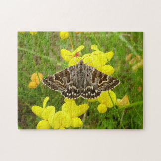 Mother Shipton Moth Photo Puzzle with Gift Box