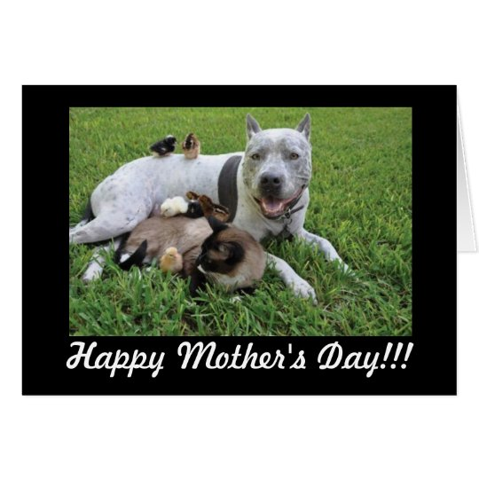 Mother's Day Animal Lover Fur Baby Mum Card