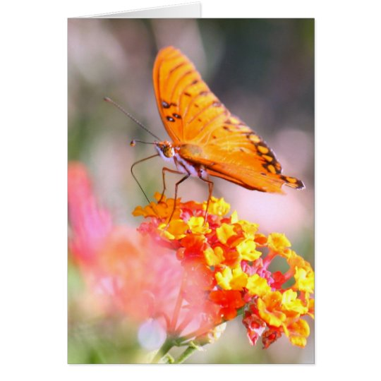 Mother's Day Butterfly pinks and yellow blooms Card