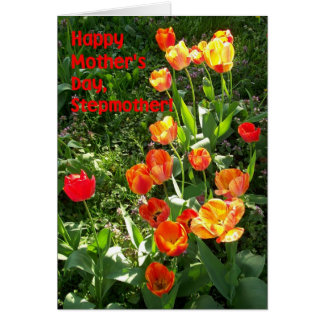 Mother's Day Card for a Stepmother - 'Tulips'