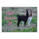 Mother's Day card-llama kids