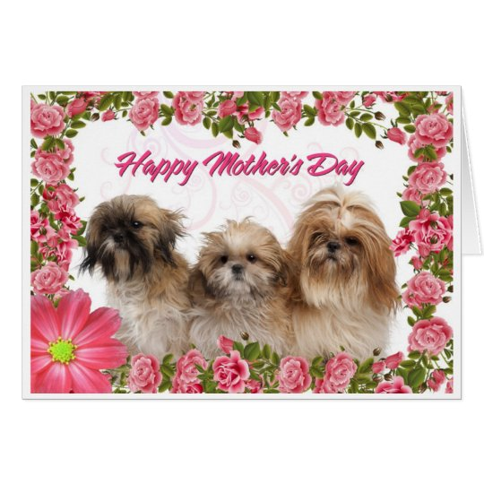 Mother's Day Card - Shih Tzu Dogs -