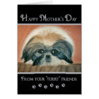 Mother's Day  - From Furry Friends Card